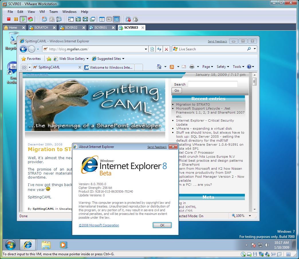 Update internet explorer 7 windows server 2003 windows 2000 server automatic updates greyed out